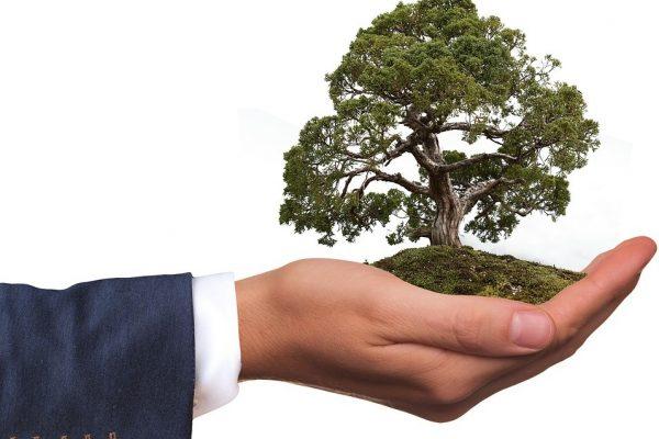 sustainability copywriting